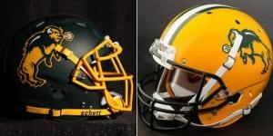 Bison helmets