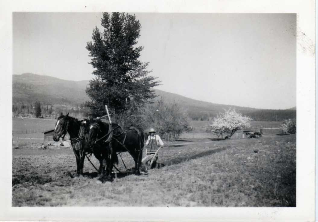 Joe Timoskevich Idaho
