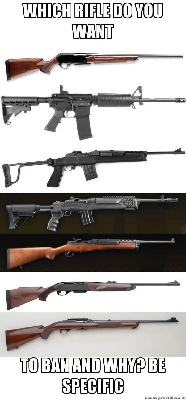 which gun